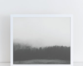 Forest Print, Black and White Prints, Large Wall Art, Forest Photography, Forest Poster, Forest Wall Decor, Landscape Photography, Modern.