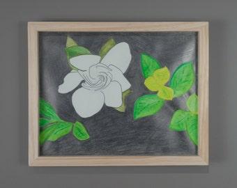 Gardenia (Edition #1)