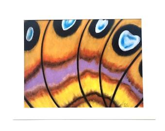 Butterfly Wing #3