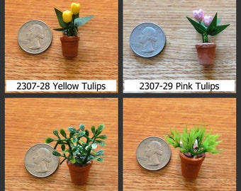 Mini Topiary Etsy