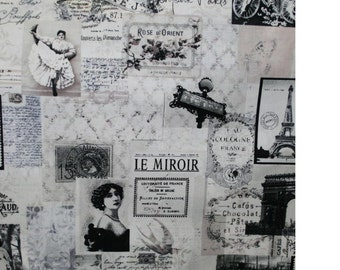 Paris Timeless Treasure Fabric