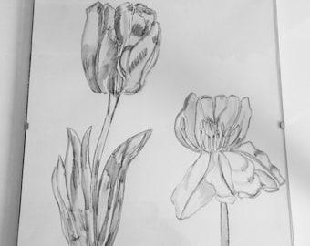Tulip Contemporary Monochrome Botanical Illustration