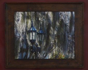 Street Lamp and Moss