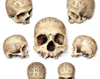 """Skulls on demand """"Rotas"""""""
