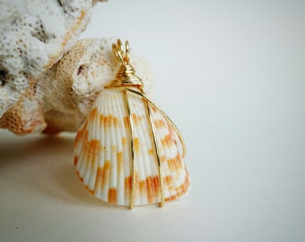 Nature Beach Seashell Gold Wire Wrapped Pendant Necklace, Minimalist Style Beach Jewelry, Seaside Wedding, Bridesmaid Gift, One of a Kind