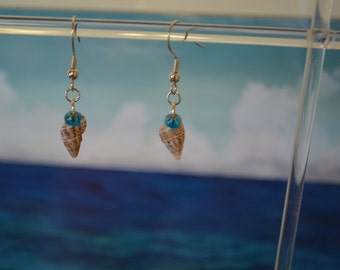 Cayman Islands shell earrings with blue glass beads