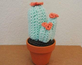 Lea cactus