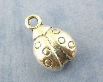"5 followers ""Ladybug"" - 13 * 8 mm - antique silver / S1-0957"