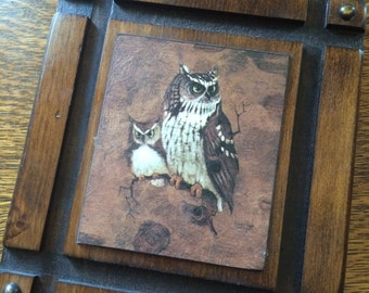 Owl picture - handcarved wood