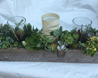 Succulent Wedding Centerpieces handmade