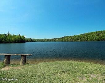 Serene Lake in Summer Print, Bench, Water, Trees