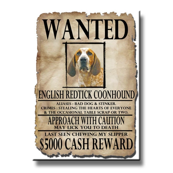 English Redtick Coonhound Wanted Poster Fridge Magnet