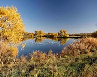 PRINT ENLARGEMENT- Fall Reflections