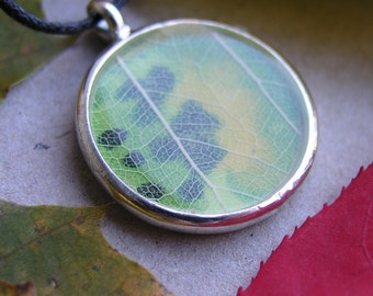 Leaf necklace, autumn leaf pendant, yellow green spot leaves