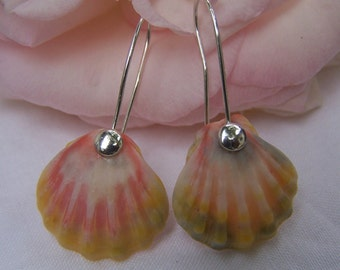 Sunrise shell sterling silver earrings
