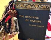 "Junk Journal Memory Keeper Vintage Ephemera ""Beauties of Nature"" Lovely Gift"