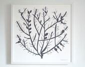 Pencil Cholla Cactus Print