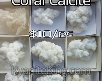 CORAL CALCITE *White Mineral specimens 1 Pc