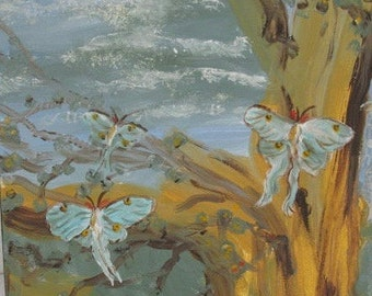 Blue Luna Moths Original Painting by Kate Ladd 12 x 12 inches