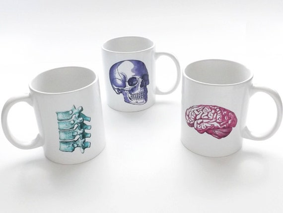 Medical Assistant anatomy gift coffee mug skull nurse practitioner physical therapist doctor spine vertebrae stocking stuffer chiropractor