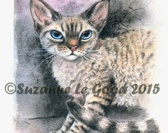 DEVON REX CAT Limited Edition print  by Suzanne Le Good