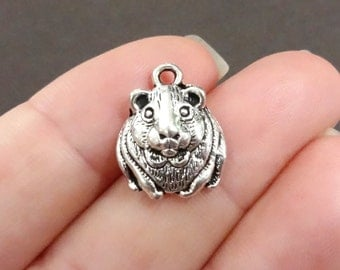 10, Hamster, Guinea Pig, Gerbil, Pet Charms 18x14x5mm