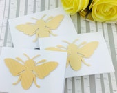 Mini Bee Cards Collection Set of 10