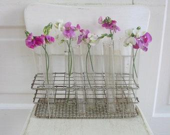Vintage Test Tubes, Test Tube Rack, Vintage Metal Rack, Vintage Science, Vintage Vase, Industrial Decor