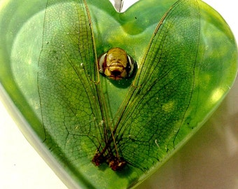 Fairy Pixie Pixy Wings Large Real Insect Wings Heart Pendant Real Dragonfly Dragon Fly Wings and Head C3