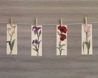 Set of 4 original acrylic paintings - florals multi color by Mary Beth Medley