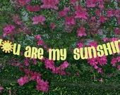 You Are My Sunshine, Mother's Day Decoration, Birthday Banner, Nursery Decor, Baby Shower