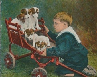 Vintage Postcard - Cute Kid and Puppies - An Interesting Family - 1900s Postcard - Memorabilia