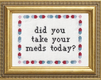 Subversive Cross Stitch Kit: Did You Take Your Meds Today?