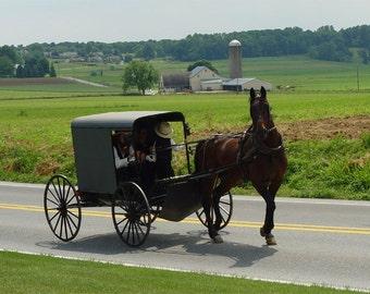 eBook/65 Amish Recipes  Cookbook