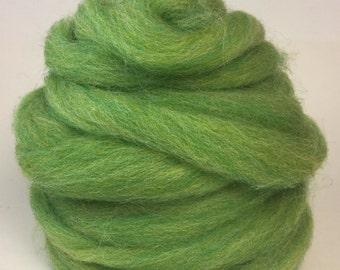 Wool roving in Kiwi