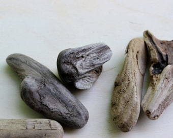 Small Driftwood Collection Nautical 5 Pieces for Art & Jewelry supply and Home Decor UDC5