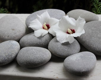 Grey Lake Stone Collection of 10 for Crafts , DIY Wedding , Natural Garden Decoration
