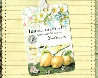 Tags, Vintage Botanicals, Lemons, Party Favors, Lemonade, Gift Tags