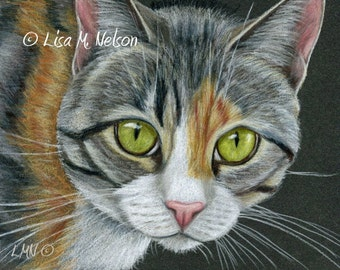 Big Eyed Tabby on Black Giclee Print of my Original Colored Pencil Drawing
