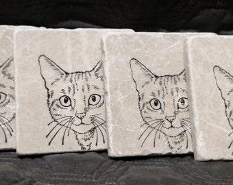Kitty Coasters (set of 4)