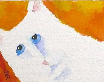 Original ACEO Cat Art,White Cat Art,  Angel Boy, ATC,  Watercolor on 300# Arches Rag Paper.