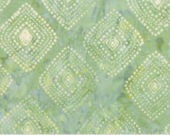Direction ... Kate Spain  Latitude Batiks by Moda Fabrics ... Valley colorway 27250 273