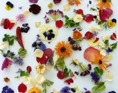 Dry Flowers, Wedding Confetti, Craft Supply,  Dry Flower Petals, Flower Girl, Violas, Aisle, Real Flowers, 1 Box of Dry Flower Confetti