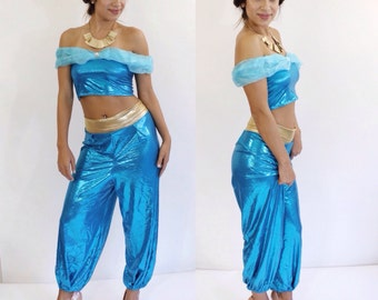 Arabian princess costume top & pants