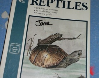 Reptiles Cards vintage 1989 Study Guide full color drawings third thru sixth grade turtles lizards teacher's guide 16 picture 30 fact cards