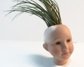 Unique gift for someone who has everything. Green eyed pot head planter.