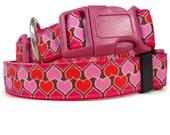 Valentine Hearts dog collar.  FREE Custom Engraved Tag.