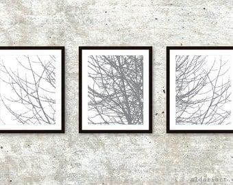 Modern Tree Triptych / Tree Branches Prints / Set of 3 / Winter Tree Wall Art / 5x7 or 8x10 / Slate Grey / Aldari Art