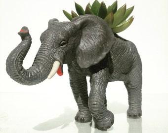 Bobo the planted elephant