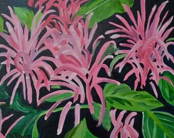 Brazilian Plume Flower | 8 x 10 | Impressionist | Still Life Painting botanical Art Hot Pink Flamingo flower Jacobinia garden plant